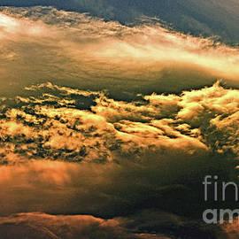 Another World by Liz Alderdice