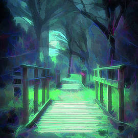 Another World - Wooden Bridge by Scott Lyons