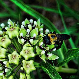 Antelope Horns And Bumblebee by Karen Slagle