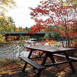 Anyone For Fall Picnic By The Lake by Debbie Oppermann