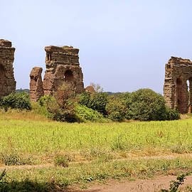 Aqueduct Park Ruins by Sally Weigand