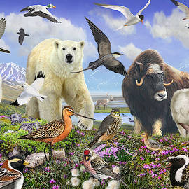 Arctic Birds And Wildlife by R christopher Vest