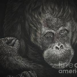 Are You Looking At Me by Bob Williams