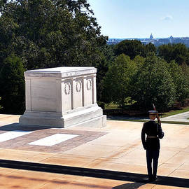 Arlington- Tomb of the Unknown Soldier by Michael Rucker