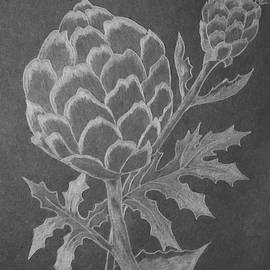 Artichoke  by Irma Duckett