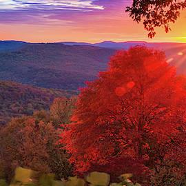 Artist Point Autumn Glory Panorama - Mountainburg Arkansas by Gregory Ballos