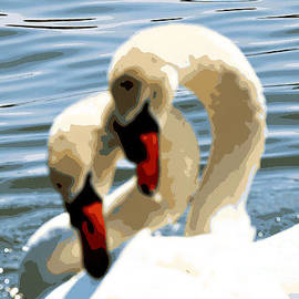 Artsy Swan Affections by Diann Fisher