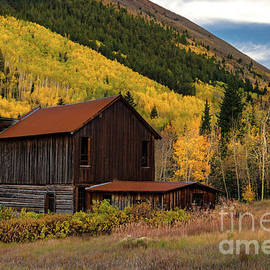 Ashcroft Barn in Autumn Colors by Norma Brandsberg