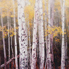 Saija Lehtonen - Aspens In The Fog