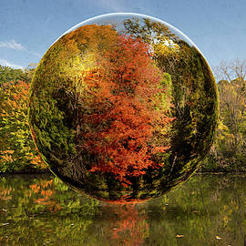 Autumnal Abstractions by Andrea Swiedler