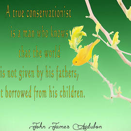 Audubon Warbler Quote by Dan Sproul