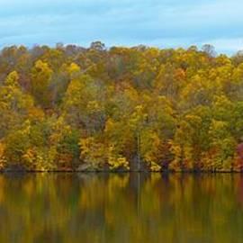 Autumn At Prettyboy by Donald C Morgan