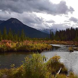 Autumn at Vermilion Lakes by Dana Hardy