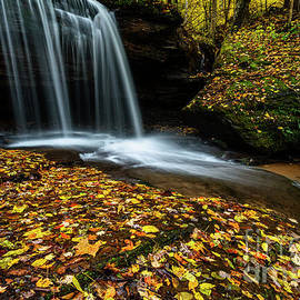 Autumn Barton Mill Run Waterfall  by Thomas R Fletcher