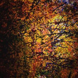Autumn Blaze by Richard Andrews