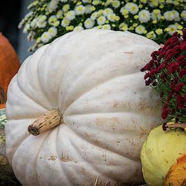 Autumn Bounty by Mary Ann Artz