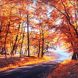 Autumn Calling by Rima Biswas