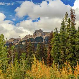 Autumn Colors In Alberta by Dan Sproul