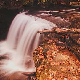 Autumn Falls by Jim Love