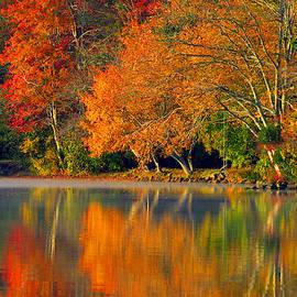 Autumn Fire by Dianne Cowen
