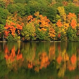 Autumn Foliage Reflections by Rose Wark