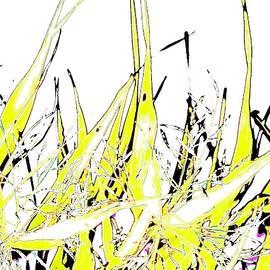 Autumn Grass Hot Day by Alida M Haslett