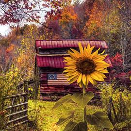 Autumn Greeting by Debra and Dave Vanderlaan