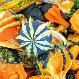 Jane Butera Borgardt - Autumn Harvest