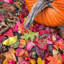 Autumn Harvest by Jill Love