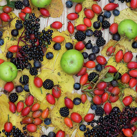 Autumn Hedgrow Fruits by Tim Gainey