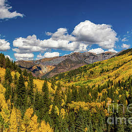 Autumn in Box Canyon by Norma Brandsberg