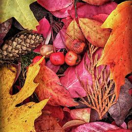 Autumn in Michigan by Jill Love Photo Art