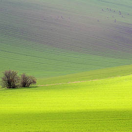 Dubi Roman - Autumn in South Moravia 13