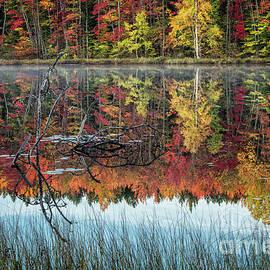 Autumn In Munising Michigan 6 by Timothy Hacker
