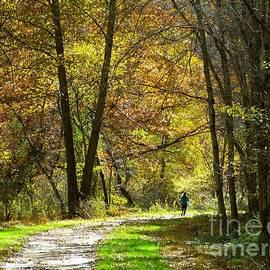 Autumn Jogger by Donald C Morgan