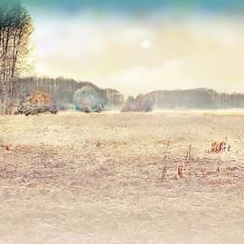 Autumn Landscape #5 by Slawek Aniol