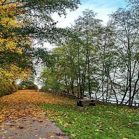 Autumn landscape with picnic area  by Alex Lyubar