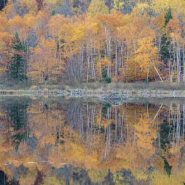 Edward Muennich - Autumn Leaves Reflected