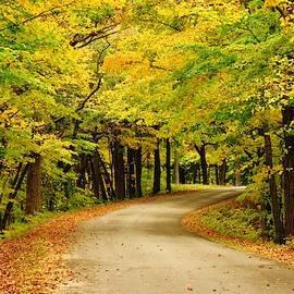 Autumn on the Backbone by Lori Frisch