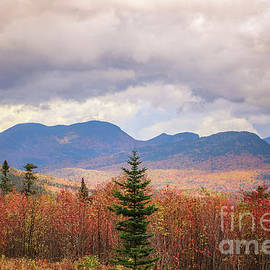 Autumn over the White Mountains by Claudia M Photography
