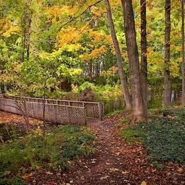 Autumn Path by LuAnn Griffin