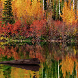Autumn Reflections by Leland D Howard