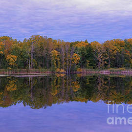 Autumn Reflections of Maybury by Rachel Cohen