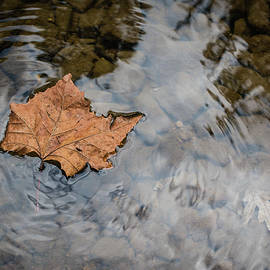 Autumn Ripples by Jim Love