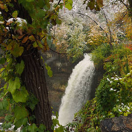 Autumn Snow Minnehaha Falls by James Peterson
