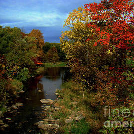 Autumn Splendour In Ontario V by Al Bourassa