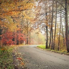 Autumn Theme #5 by Slawek Aniol
