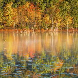 Autumn vibrance by Thomas Miller