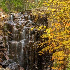 Autumn Waterfall by Karin Pinkham