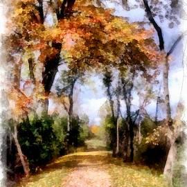 Autumnal Paths by Mario Carini